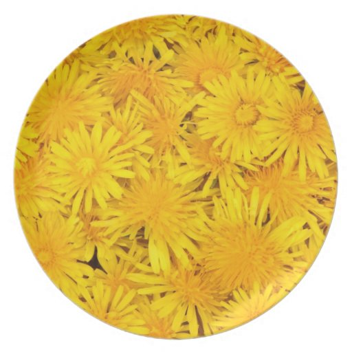 Flowers Party Plates