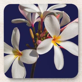 Flowers Peace Blessing Love Park Vines Destiny Beverage Coaster