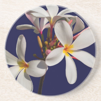 Flowers Peace Blessing Love Park Vines Destiny Drink Coaster