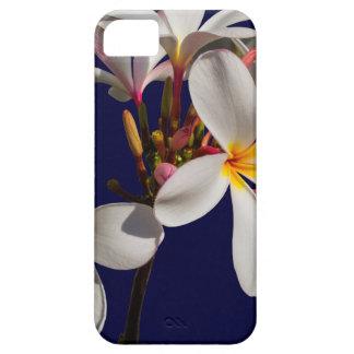 Flowers Peace Blessing Love Park Vines Destiny iPhone SE/5/5s Case