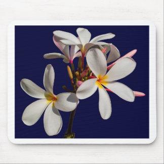 Flowers Peace Blessing Love Park Vines Destiny Mouse Pad