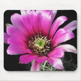 Flowers Perfect Computer Mouse Pads10 Mouse Pad