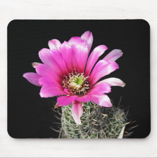 Flowers Perfect Computer Mouse Pads11 Mouse Pad