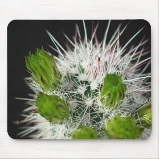 Flowers Perfect Computer Mouse Pads14 Mouse Pad