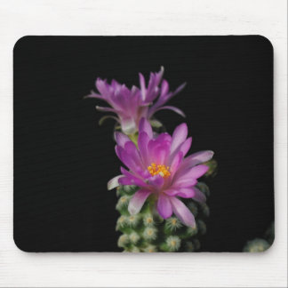 Flowers Perfect Computer Mouse Pads15 Mouse Pad
