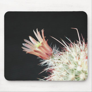 Flowers Perfect Computer Mouse Pads16 Mouse Pad