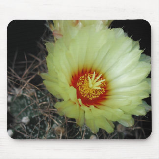 Flowers Perfect Computer Mouse Pads19 Mouse Pad