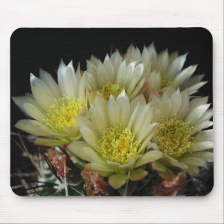 Flowers Perfect Computer Mouse Pads20 Mouse Pad