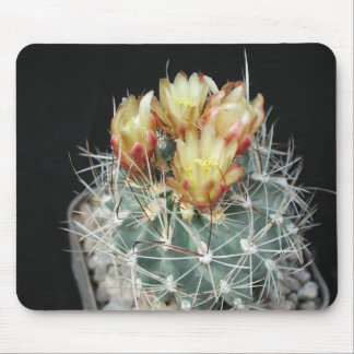 Flowers Perfect Computer Mouse Pads2 Mouse Pad