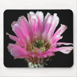 Flowers Perfect Computer Mouse Pads3 Mouse Pad