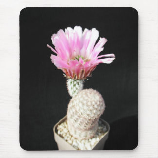Flowers Perfect Computer Mouse Pads4 Mouse Pad