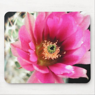 Flowers Perfect Computer Mouse Pads8 Mouse Pad