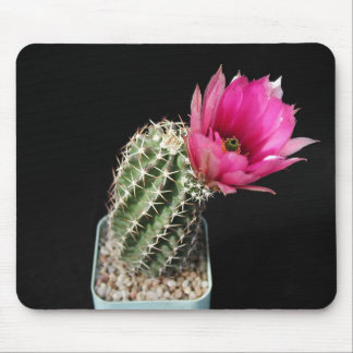 Flowers Perfect Computer Mouse Pads9 Mouse Pad