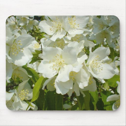 Flowers Perfect Computer Mouse Pads 128