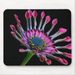 Flowers Perfect Computer Mouse Pads 37