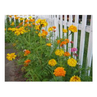 Flowers & Picket Fence Postcard