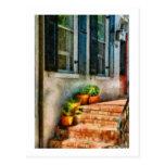 Flowers - Plants - The Stoop Postcard
