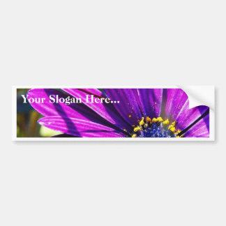 Flowers Pollen Purple Car Bumper Sticker