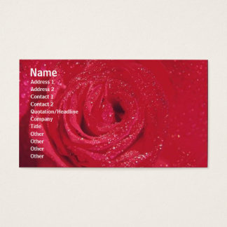 Flowers Rose Profile Card