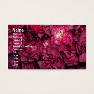 Flowers Rose Profile Card
