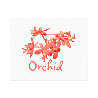 Flowers Salmon Tinted Text Ground Orchid Canvas Print
