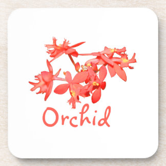 Flowers Salmon Tinted Text Ground Orchid Coaster