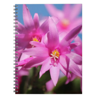Flowers So Pink Notebooks