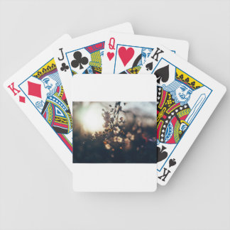 flowers sunset range sunlight bicycle playing cards