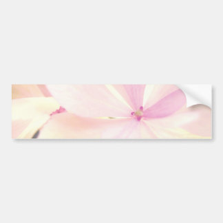 Flowers tenderness bumper sticker