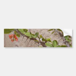 Flowers & Thorns Bumper Sticker