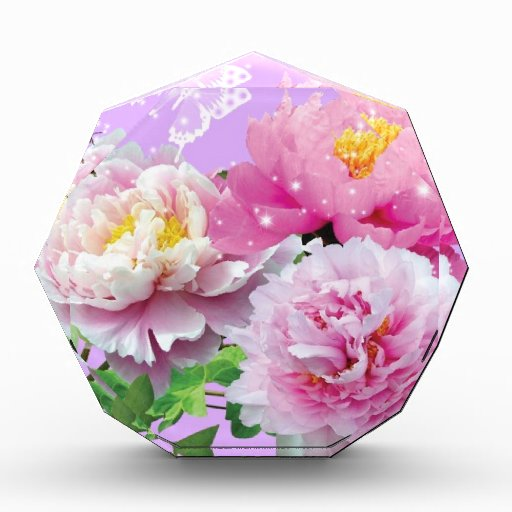 Flowers-Wallpaper-Desktop-HD-Wallpaper.jpg Awards