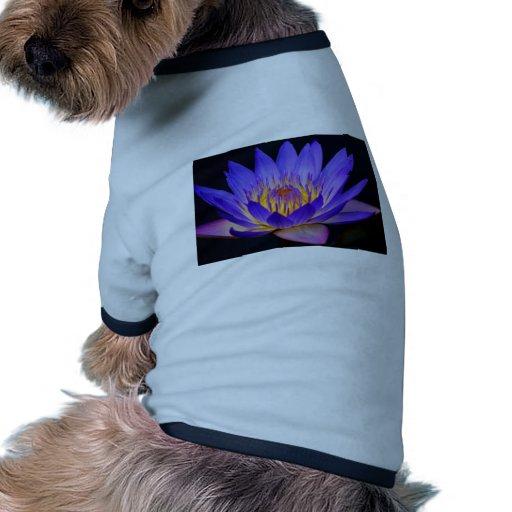 flowers-wallpapers-2013.jpg camisa de mascota
