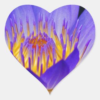 flowers-wallpapers-2013.jpg pegatina en forma de corazón