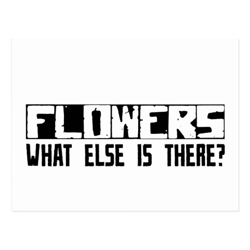 Flowers What Else Is There? Postcards