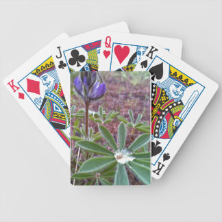 Flowers with dew bicycle playing cards