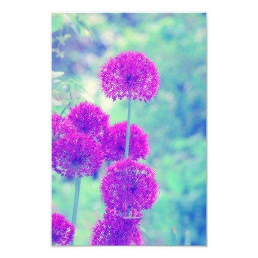 Flowers world photo print