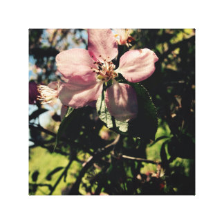 Flowery focus canvas print