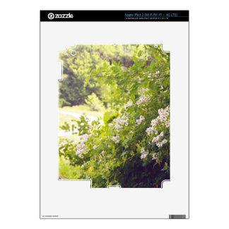 Flowery Meadow iPad 3 Decals