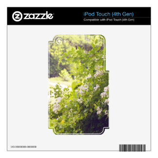 Flowery Meadow iPod Touch 4G Skins