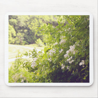 Flowery Meadow Mouse Pad