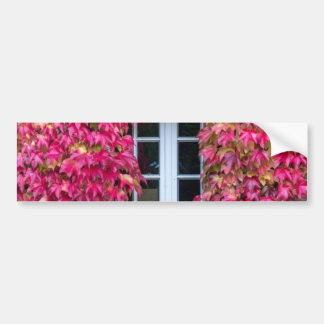 Flowery Pink Window Dulmen Germany Bumper Sticker