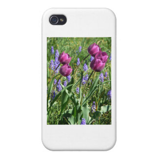 Flowing Purple Buds Case For iPhone 4