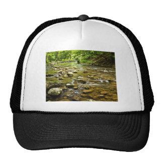 Flowing Stream Trucker Hat