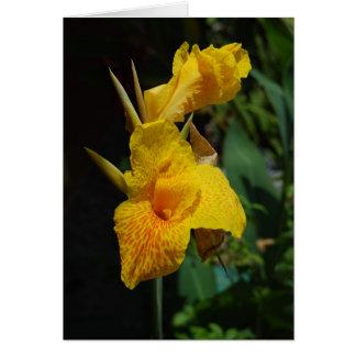 Flowres jamacian de las flores tarjetas