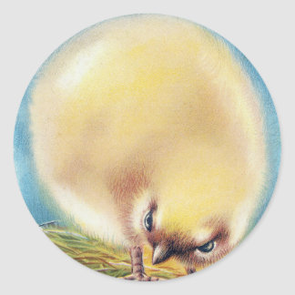 Fluffed Up Chick and Fly Vintage Easter Classic Round Sticker