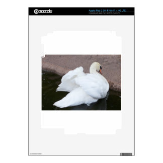 Fluffing Swan Decals For iPad 3
