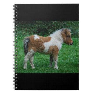 Fluffy Adorable Dartmoor Pony Notebook
