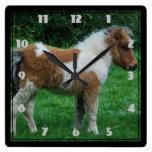 Fluffy Adorable Dartmoor Pony Square Wall Clock