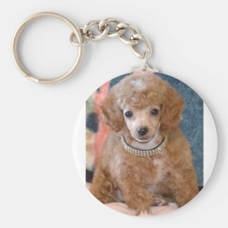 Fluffy Apricot Poodle Puppy Dog Keychain