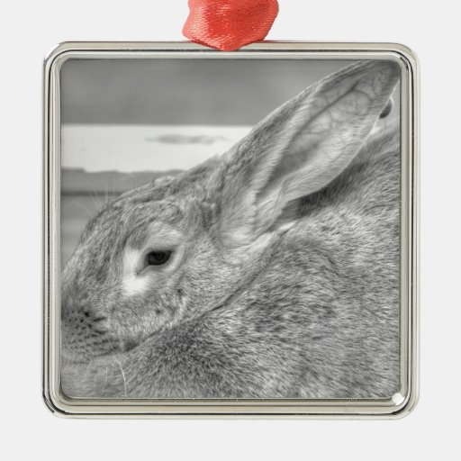 Fluffy Bunny Ornament